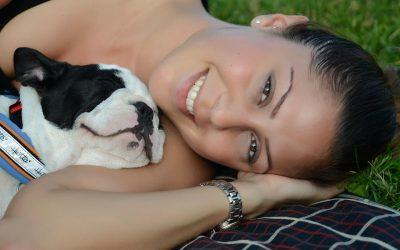 L'educazione del cane : video su come gestirlo al meglio